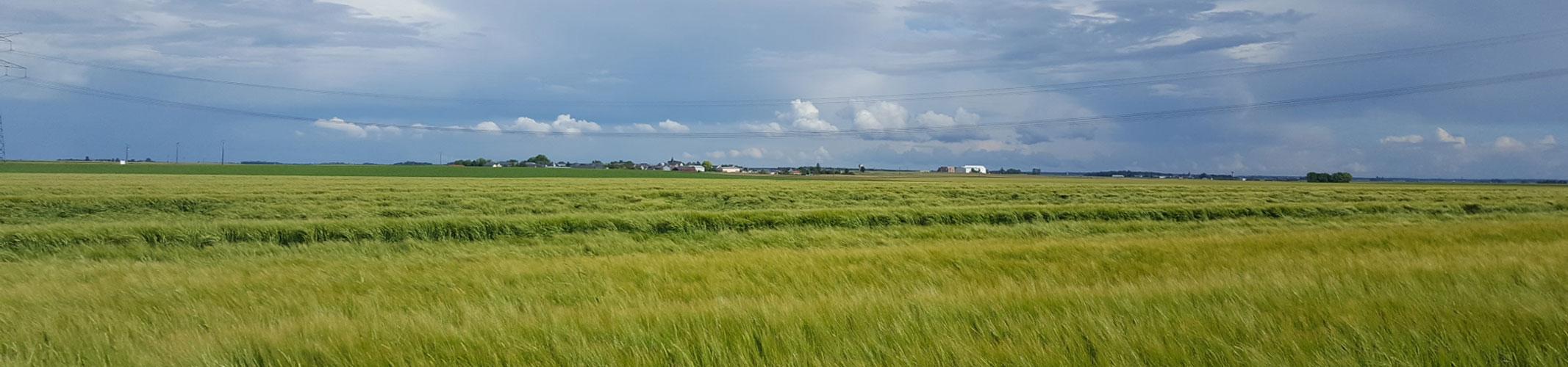 communaut u00e9 de communes plaine du nord loiret  u2013 d u00e9couvrez la ccpnl 45   scolarit u00e9  entreprises